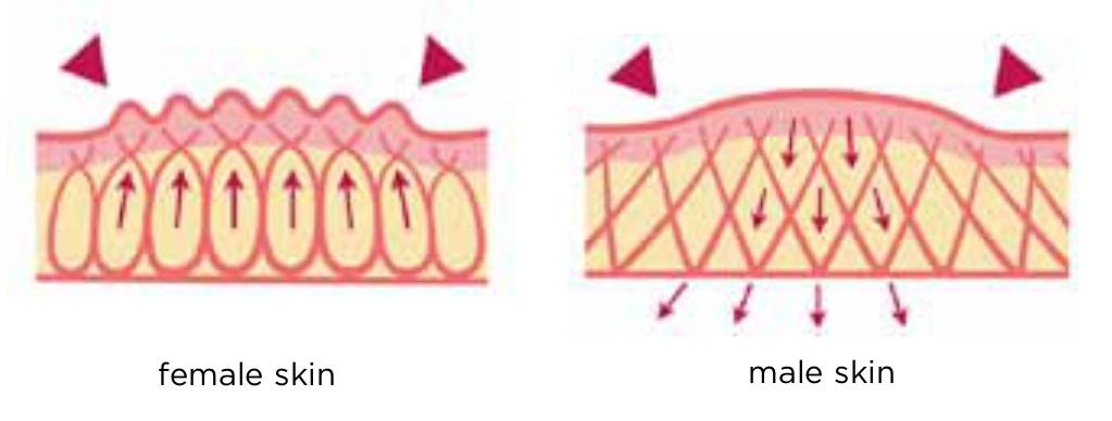 women_men-skin-cellulite